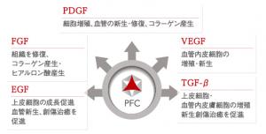 PFC成長因子
